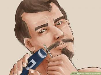 Growing A Mustache: The Basics, How To Grow A Mustache