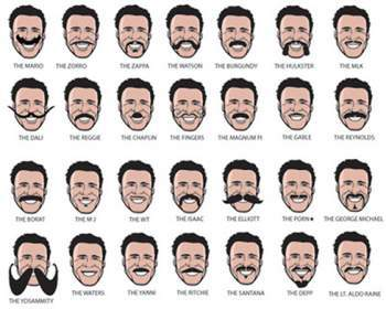 Tremendous Types Of Mustaches Pictures 2017 Beard Style Guide For Summer Schematic Wiring Diagrams Amerangerunnerswayorg