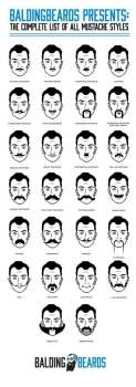 Movember different types moustaches