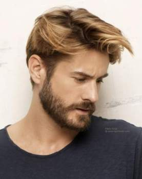 Mustache Styles - How To Grow Your Mustache Cool Men s Hair