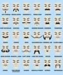 The perfect mustache