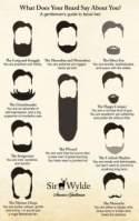 American moustache